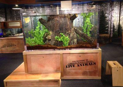 carnegie science center public aquarium_preview_preview