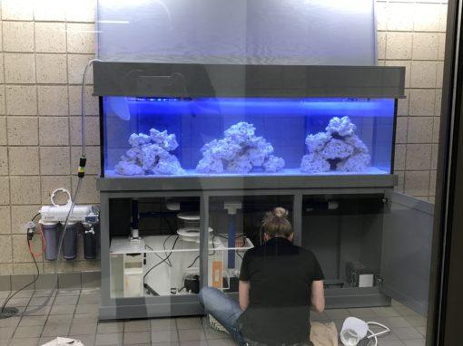 125 Gallon High School Aquarium
