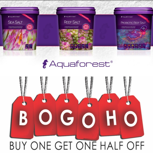⛄❄⛄❄Whip your tank in to tip top shape before the holidays with great deals at Aquarium Artisans❄⛄❄⛄