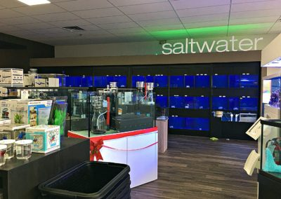 New Store Saltwater
