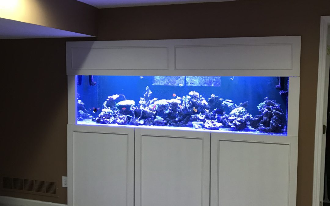 280 Gallon Rectangle Residential Basement Tank