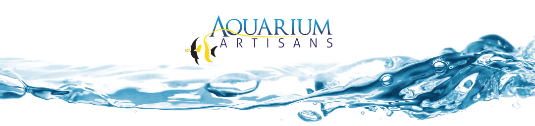 Weekly Update from Aquarium Artisans September 19th